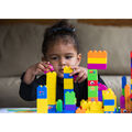 BiOBUDDi Educational - Bio Based Building Blocks and Pink Bases