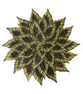Blooming Autumn Leaves Placemat-Green