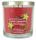 Hudson 43 Candle & Light 14 oz. Sweet Cinnamon Scented Jar Candle