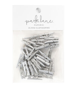Park Lane 35 pk Mini Clothespins-Silver