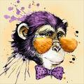 Collection D\u0027Art Diamond Embroidery/Printed/Gem Kit 38X38cm-Mr. Monkey