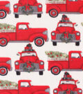 Anti-Pill Plush Fleece Fabric-Dog In Truck Holiday