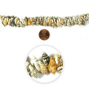 Blue Moon Strung Natural Shell Beads,Conch,Natural White & Brown, , hi-res