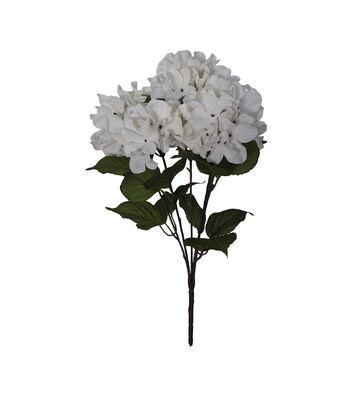Blooming Autumn Hydrangea Bush-White