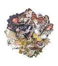 Tim Holtz Idea-ology Pack of 83 Botanical Layers