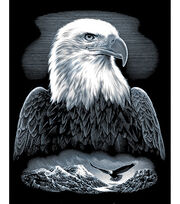 "Reeves Scraperfoil Kit 8""X10-Bald Eagle, , hi-res"