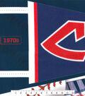 Cleveland Indians Felt Panel 36\u0027\u0027-Pennant