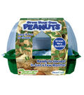 Grow Your Own Peanuts Sprout \u0027N Grow Greenhouse
