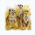 RIOLIS Counted Cross Stitch Kit-Meerkats