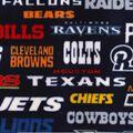 NFL Fleece Fabric -All Teams