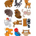 Woodland Animals Cut Outs 36/pk, Set Of 6 Packs