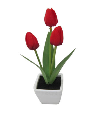 Fresh Picked Spring 10'' Tulip in Container-Red
