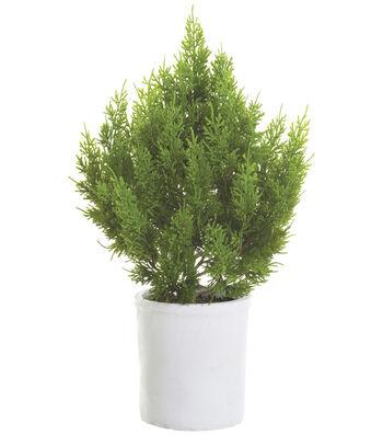 Cedar Tree in Terra Cotta Pot 23''