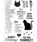 Pawfect Clear Stamps 6\u0022X4\u0022-Cat