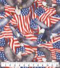 Anti-Pill Plush Fleece Fabric-Flags And Eagles