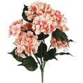 Bloom Room 22\u0027\u0027 Hydrangea Bush-Pink