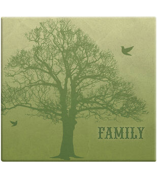 MBI 12''x12'' Post Bound Scrapbook Album with Name Window-Family Tree