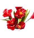 Lia Griffith 10 pk 9.8\u0027\u0027x78.7\u0027\u0027 Extra Fine Crepe Papers-Enchanted Garden