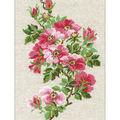 RIOLIS 8.25\u0027\u0027x11.75\u0027\u0027 Counted Cross Stitch Kit-May Wild Rose