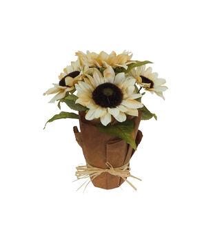 Blooming Autumn Sunflower Arrangement-Cream