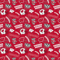 University of Wisconsin Badgers Cotton Fabric-Tone on Tone