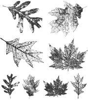 Tim Holtz Cling Rubber Stamp Set-Falling Leaves, , hi-res