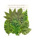 Prima Marketing Printed Fabric Leaf Embellishments 12/Pkg-Rainer Leaves