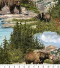 Anti-Pill Fleece Fabric -Bear Mountain Wilderness
