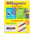 Magnets Learning Chart 17\u0022x22\u0022 6pk