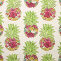 Oudoor Canvas Fabric-Floral Pineapple