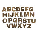 Fab Lab Craft 36 pk Uppercase Alphabet Letters-Rustic