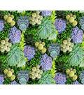 Novelty Cotton Fabric-Succulents