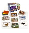 Language Builder: Picture Nouns Card Set 1, Pack of 350