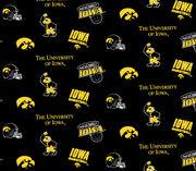 "University of Iowa Hawkeyes Cotton Fabric 44""-Black, , hi-res"