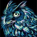 RTO Diamond Mosaic Embroidery Kit 25X25cm-Neon Owl
