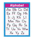 Teacher Created Resources Traditional Printing Chart 6pk