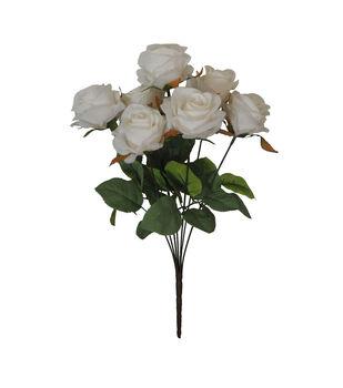 Blooming Autumn Rose Bush-White