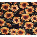 Super Snuggle Flannel Fabric-Sketched Sunflowers on Black