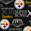 Pittsburgh Steelers Champion Legacy Fleece Fabric