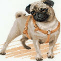 Pug Dog Counted Cross Stitch Kit 14 Count