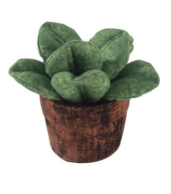 Pin Cushion-Succulent Wide Leaf