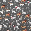 Super Snuggle Flannel Fabric-Show Dog Friends