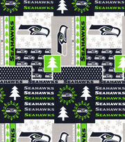 Nfl Seattle Seahawks Winter Ctn, , hi-res