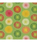 Solarium Outdoor Fabric 54\u0022-Beringer Spring