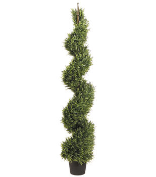 Spiral Rosemary Topiary in Pot 5'