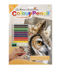 Royal Langnickel Sepia Owl Color Pencil By Number Kit