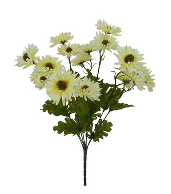 Blooming Autumn Daisy Bush-Cream