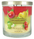 Hudson 43 Candle & Light 14 oz. Orchard Apple Premium Scented Jar Candle