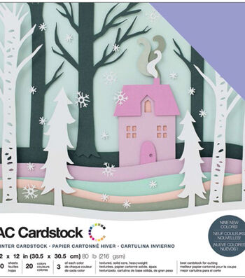 """American Crafts Variety Cardstock Pack 12""""X12""""-Winter"""