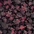Silky Velvet Burnout Fabric-Dark Blooms on Black